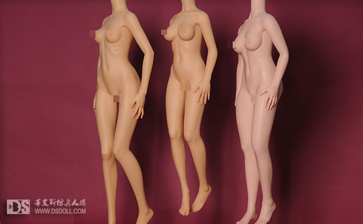 145cm,168cm and 160cm bodies compare