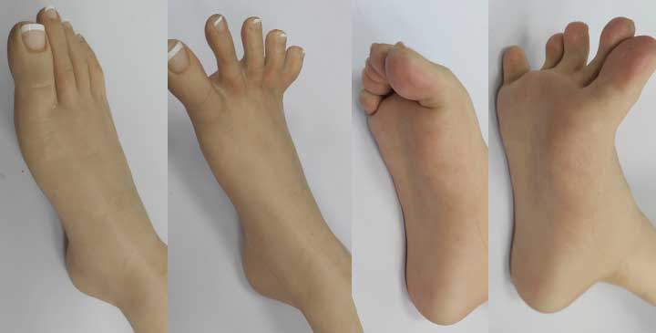 sex doll hand and feet